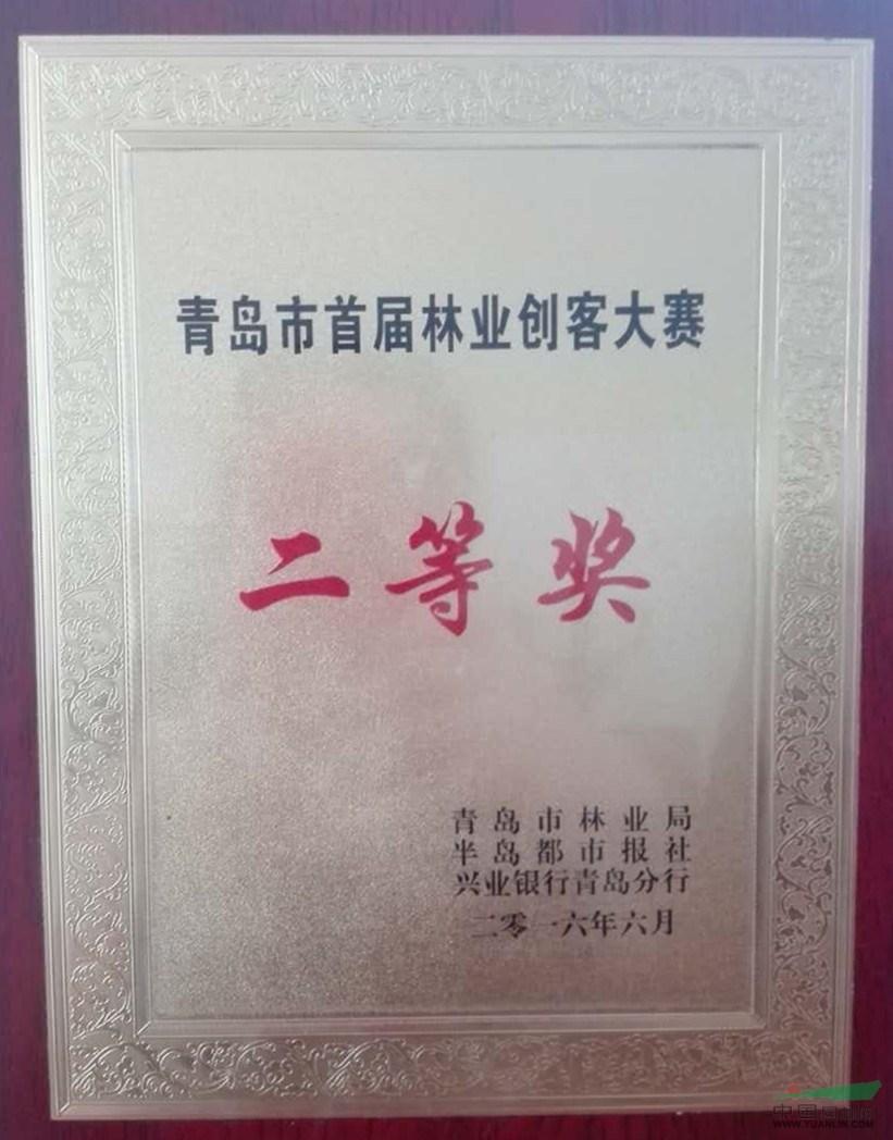 青岛*届林业创客大赛二等奖