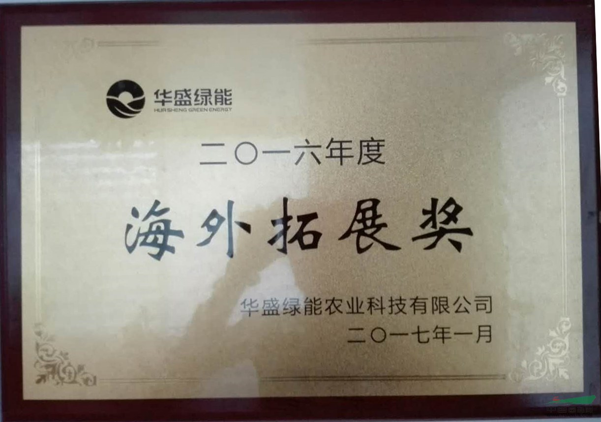 海外拓展奖